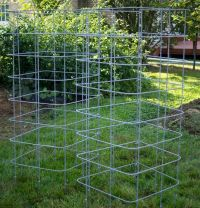 25+ best ideas about Tomato Cages on Pinterest | Staking ...