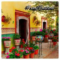 Best 25+ Mexican garden ideas on Pinterest | Mexican style ...