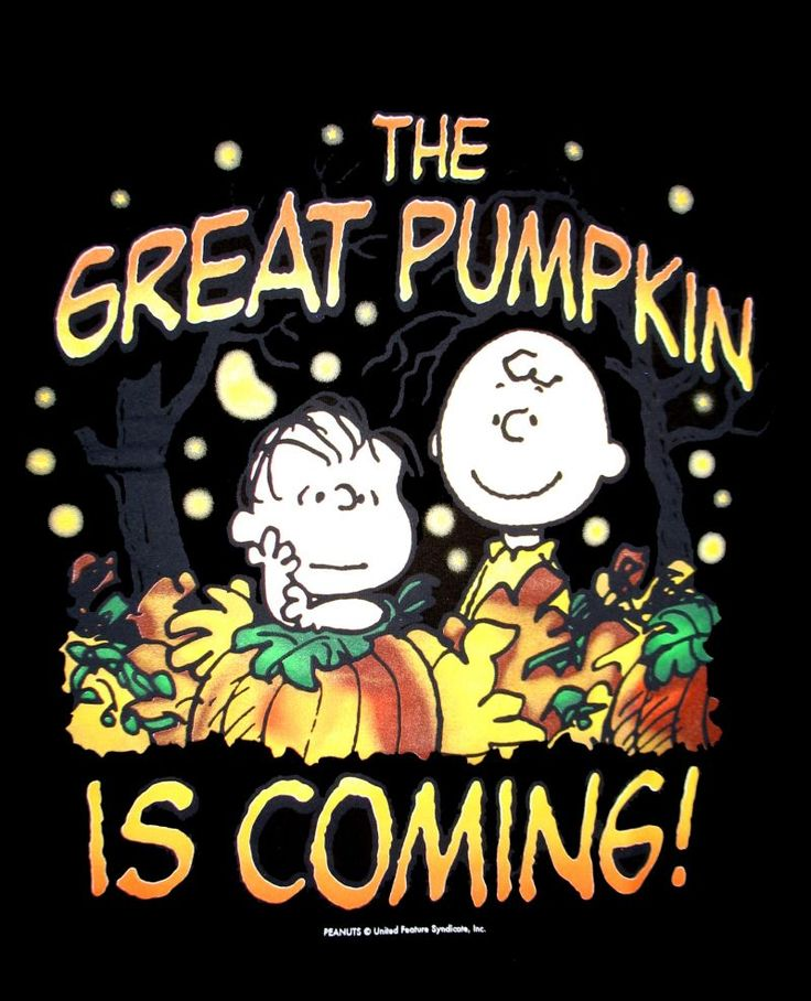 Peanuts Fall Iphone Wallpaper 33 Best Images About It S Halloween Charlie Brown On
