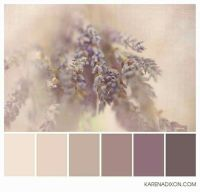 25+ best ideas about Brown colors on Pinterest | Brown ...