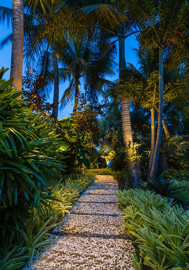 Low Voltage Lighting Outdoor Best 25+ Tropical Landscape Lighting Ideas On Pinterest