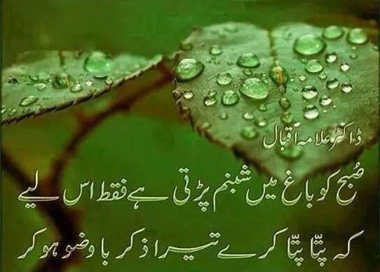 Sad Wallpaper With Quotes In Urdu Dew Drops On Leaves Allama Iqbal Islamic Shayari