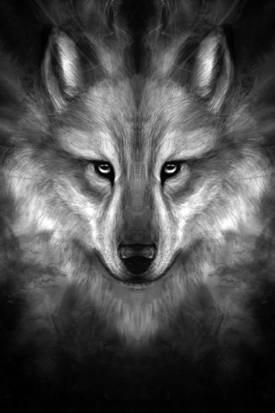 FreeiOS7   wolf-face-story-center   freeios7.com   iPhone iPad parallax wallpaper   Pinterest ...