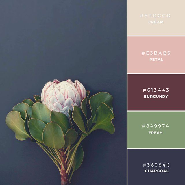 78 Best Ideas About Fall Color Palette On Pinterest | Fall Color