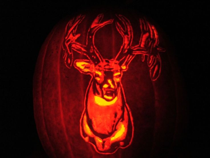 Fall Themed Wallpaper Patters 1000 Images About Pumpkin Carving Ideas On Pinterest