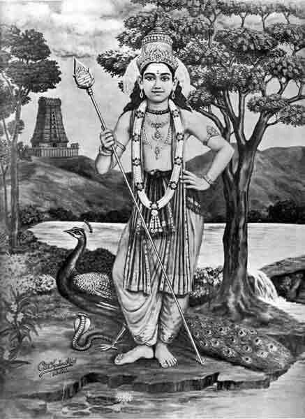Sri Krishna Hd Wallpaper Download 17 Best Images About Lord Muruga On Pinterest Peacocks