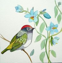 3861 best images about Birds paintings and drowings on ...