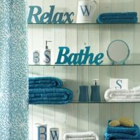 17 Best images about Bathroom decor for teal walls on ...