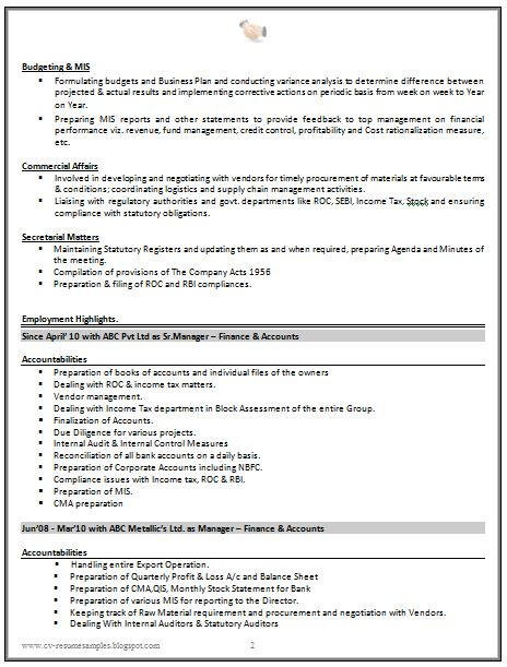 budget accountant resume sample