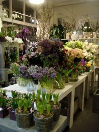 1000+ ideas about Flower Shop Interiors on Pinterest ...