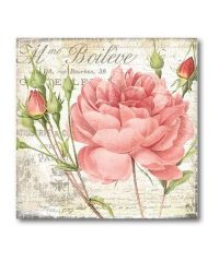 Courtside Market Shabby Chic Roses II Canvas Wrapped ...