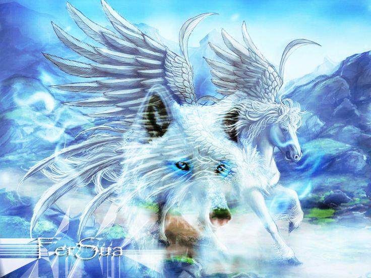 Saint Seiya 3d Live Wallpaper Unicorn Pegasus Related Keywords Amp Suggestions Unicorn