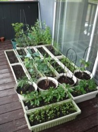 17 Best images about Balcony vegetable garden on Pinterest ...