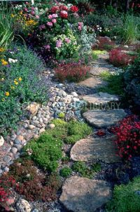 17 Best ideas about Stepping Stone Walkways on Pinterest ...