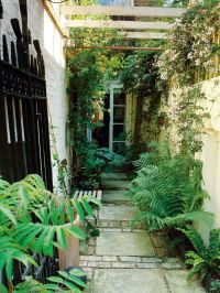 25+ best ideas about Narrow garden on Pinterest