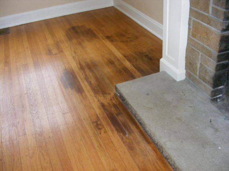 How To Clean Pet Urine From Wood Floors Stepbystep Just