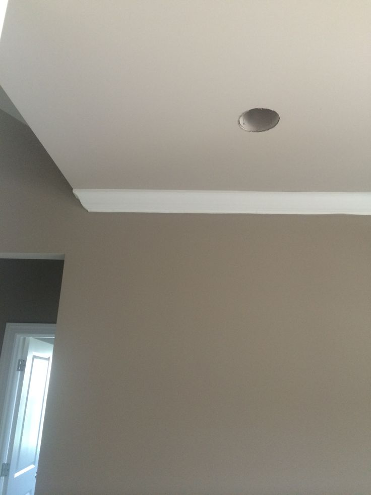 Agreeable Gray Vs Revere Pewter Sherwin Williams Mega Greige With Sherwin Williams Anew