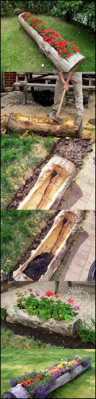 Outdoor tree stump ideas - Outdoor Tree Stump Ideas