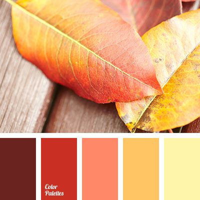 1000+ Ideas About Brown Colors On Pinterest | Caramel Brown