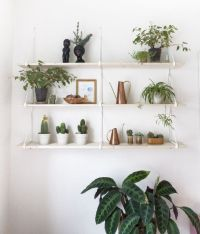 Best 25+ Plant shelves ideas on Pinterest   Plant wall ...