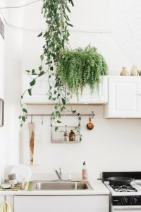 17 Best ideas about Green Kitchen Cabinets on Pinterest ...