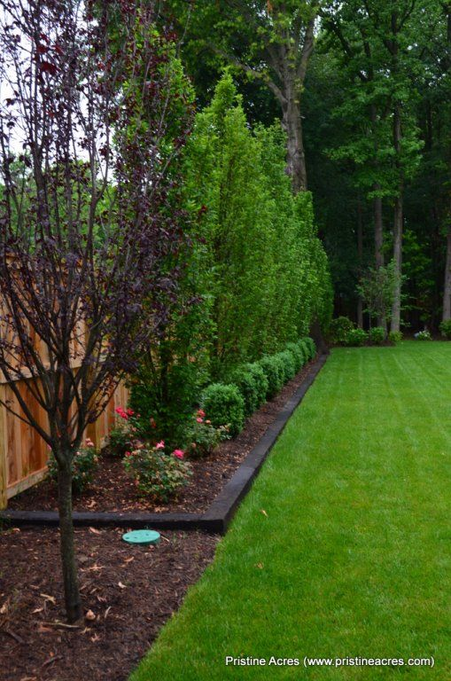 10+ Ideas About Backyard Landscape Design On Pinterest | Backyard