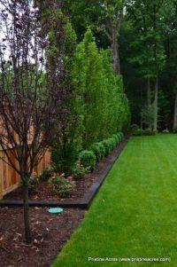 25+ best ideas about Backyard Landscaping on Pinterest ...