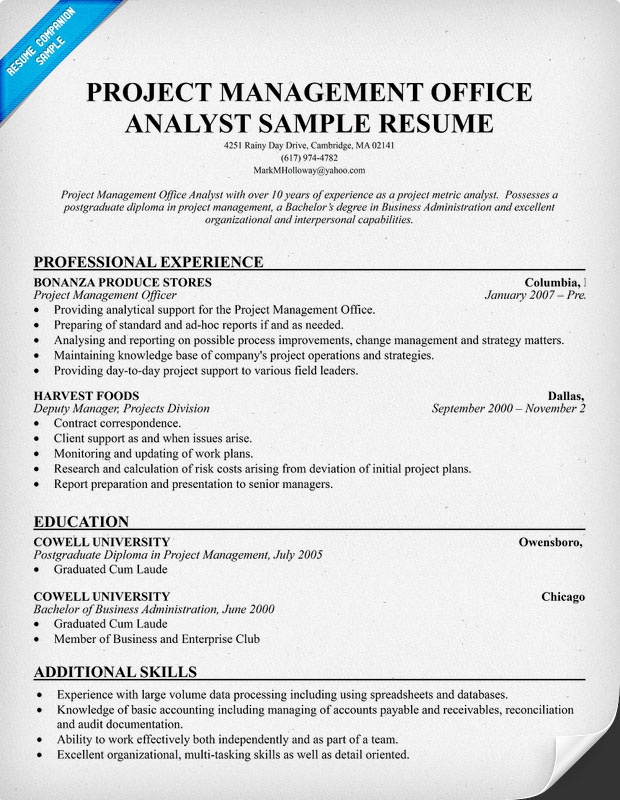 Resume Service In Calgary | Template For Business Organizational Chart