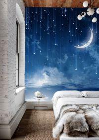Moon Sky Wallpaper Mysterious Moonlit Wall Mural Starry ...