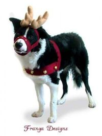17 Best images about Costumes on Pinterest | Reindeer ...