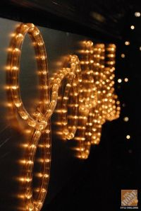 1000+ ideas about Rope Lighting on Pinterest | Led down ...