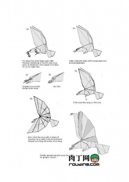 origami diagram of the eagle b ewins