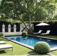 89 best images about Pool Privacy Ideas on Pinterest ...