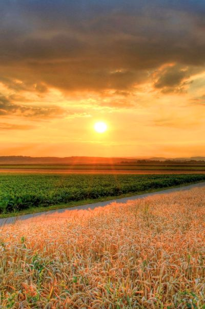 Download free retina iphone wallpapers, iPhone hd wallpaper of Nature Landscape Sunset   iPhone ...