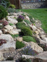 17 Best images about Rock garden ideas on Pinterest