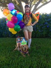 25+ best Dog Costumes ideas on Pinterest | Dog halloween ...
