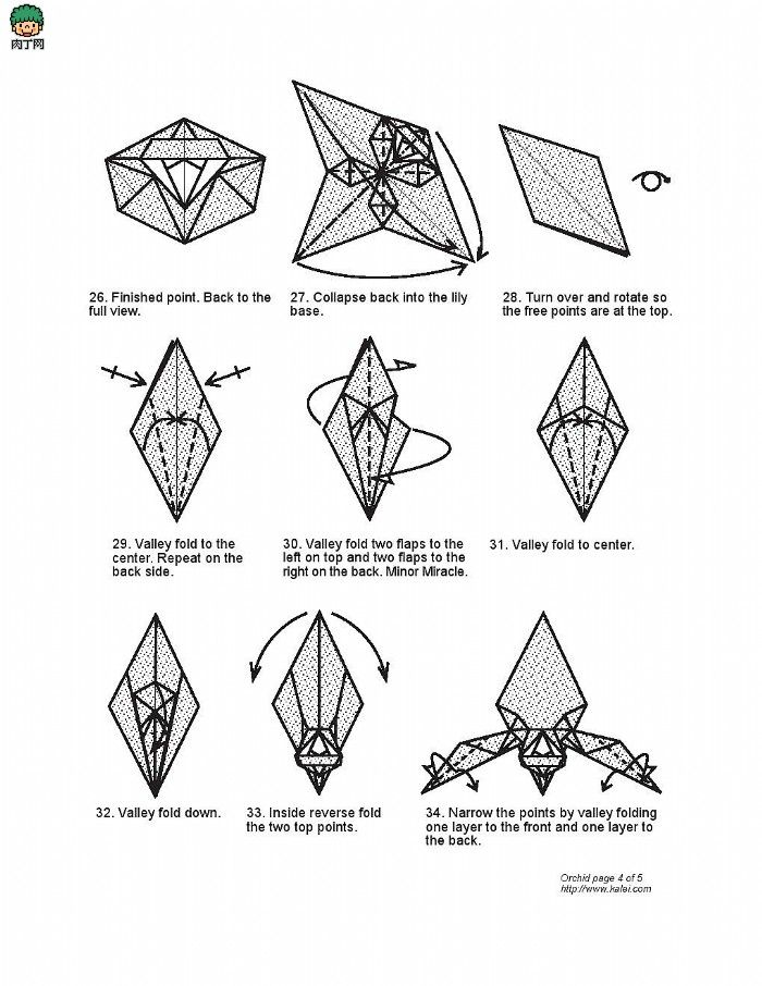 origami star flower diagram origami pinterest