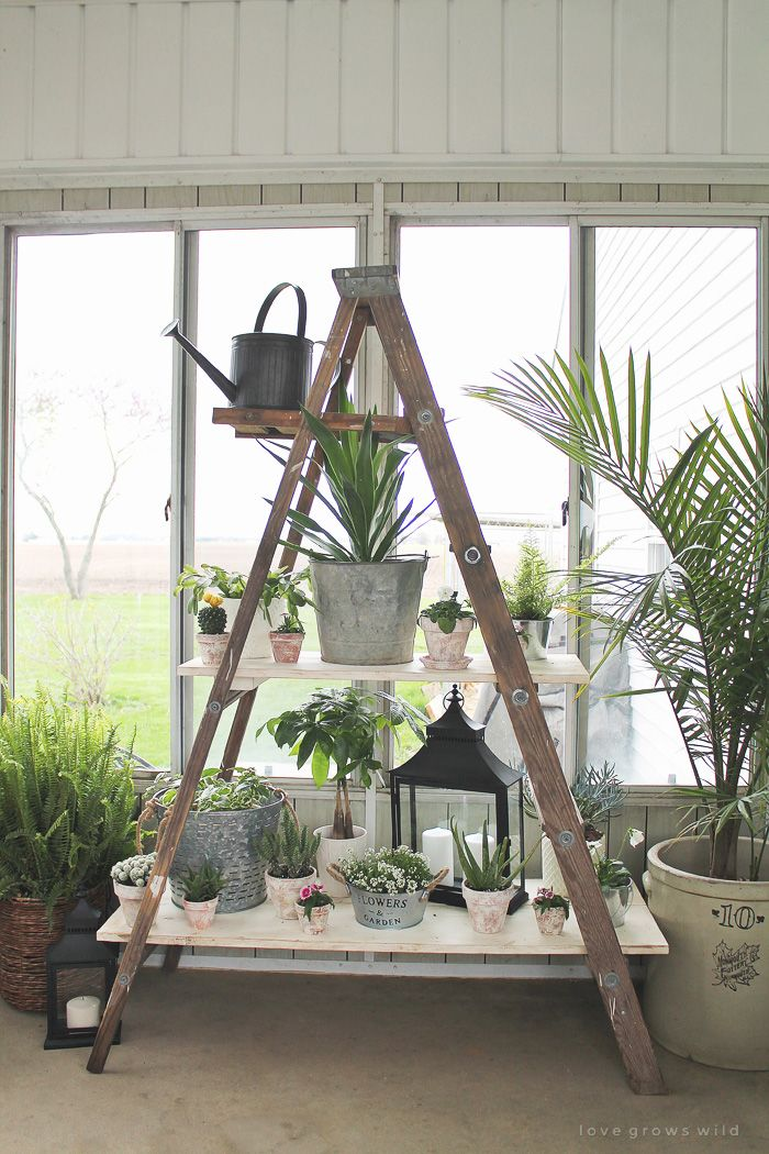 25 Best Ideas About Antique Ladder On Pinterest Old