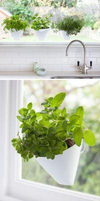 17 Best ideas about Indoor Window Garden on Pinterest ...