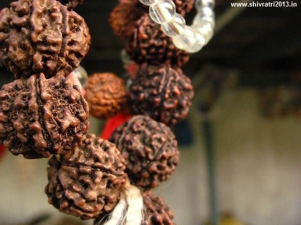Shivaji 3d Wallpapers Rudraksha Wallpapers Pictures Images Photos Hd