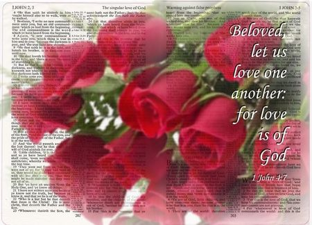 Free Desktop Wallpaper Scripture Fall Inspiring Scriptural Graphics Of Roses Red Roses And A Open Bible
