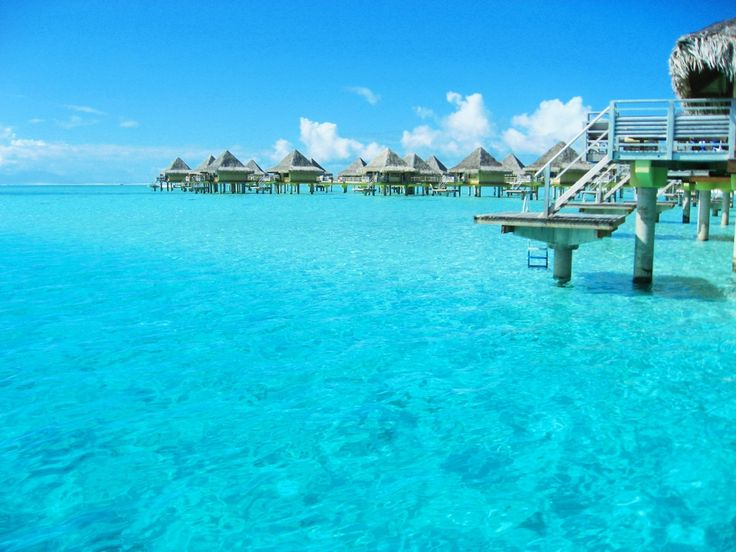 Tropical Ocean 3d Live Wallpaper 17 Best Images About Top Tahiti And Bora Bora Wedding