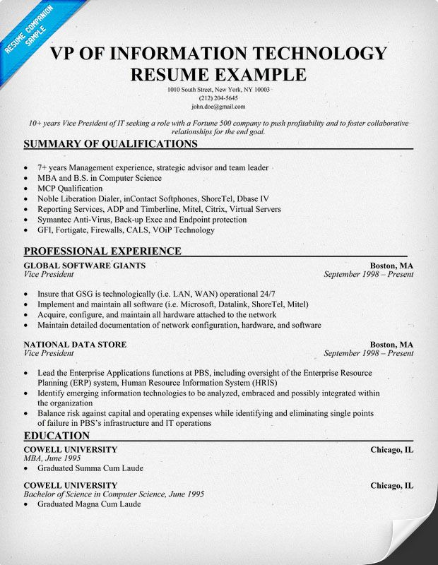 resume vp information technology