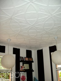 1000+ images about DIY Ceiling Projects on Pinterest ...