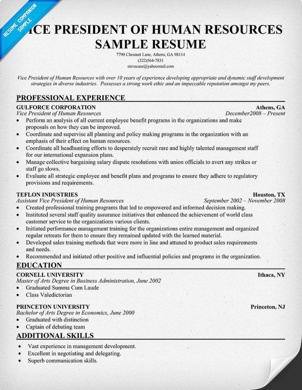 sample resume vice president human resources