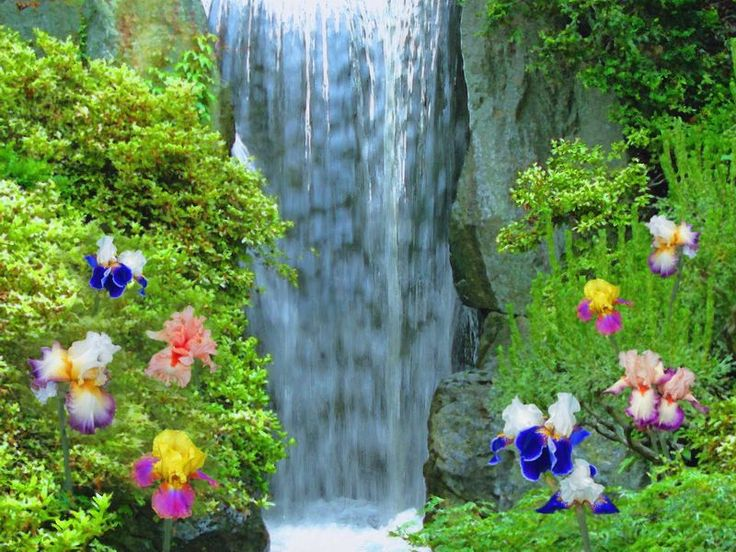 Animated Water Falling Wallpapers Most Beautiful Waterfalls Painting In Oils Photography