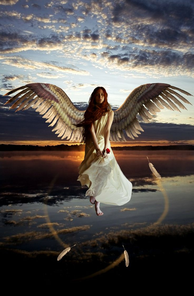 438 Best Images About Angel Wings On Pinterest