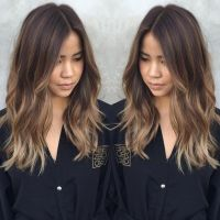 25+ best ideas about Hair Color Asian on Pinterest | Asian ...