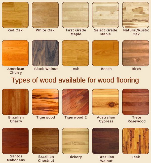10+ Ideas About Wood Flooring Types On Pinterest | Types Of Wood