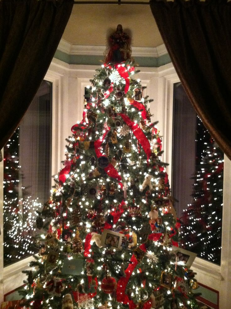Christmas tree w velvet ribbons, collected ornaments and